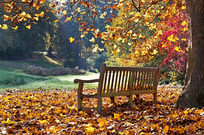 Urlaub und Erholung am Nationalpark Bayerischer Wald